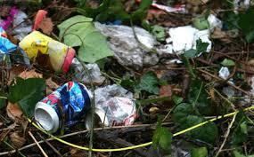 Apr 2015 Litter Pick between Oakington, Histon & Girton 9.30am