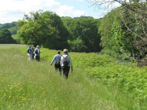PHIL'S UMBERLEIGH WALK 7th JUNE 2015