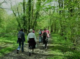 Walking the Wye