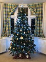 Best Dressed Christmas Tree Competition Results