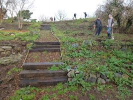 Delancey Park Woodland Walk Nears Completion (25 January 2014)