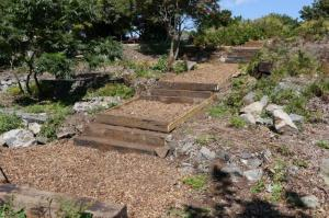 90th Anniversary project - Delancey Park Woodland Walk (2013)