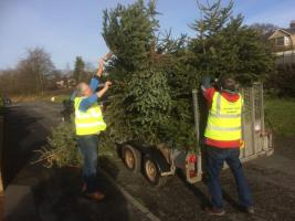 Christmas Tree Collection for St Kentigern