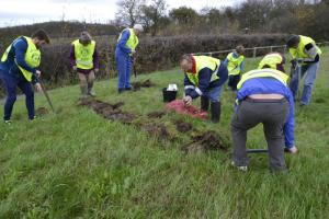 Annual Bulb Planting in Bourne 30th October 2016