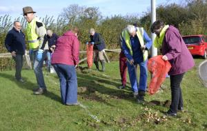 Sunday Bulb Planting in Bourne Town.