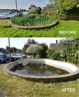 Ingleton House Pond Clearance Project