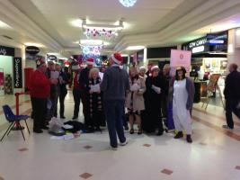Christmas Carol Singing in the Meadows