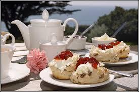 cream tea at Alan and Marjorie's 5th June