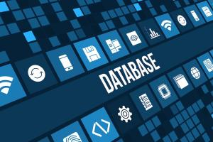 Rotary Club Central and the Database Management System