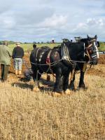 FFF&B Ploughing Championship and Country Show