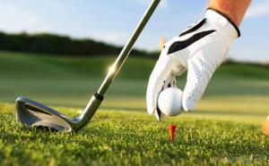 Rotary Club of Thornhill and District are hosting their Annual AM/AM Golf Competition Friday 21st July 2017 Click for more details and entry form