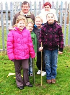 Tree windfall for Primary Schools