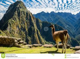 Speaker: Angela Davies - The High Peruvian Andes: shining a light on life over 4000m