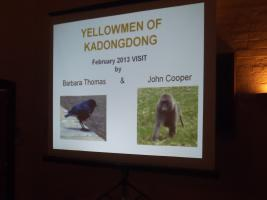 Meeting with Partners, 6.45pm for 7.15pm; The Yellowmen of Kadongdong