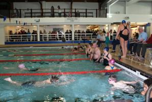 Report on 2013 Swimathon