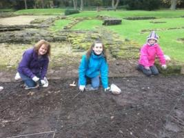 Crocus Planting at Norton Priory Museum