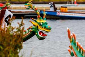 Rotary 2015 Dragon Boat Challenge