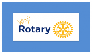 Who can be a member of Rotary? New members.