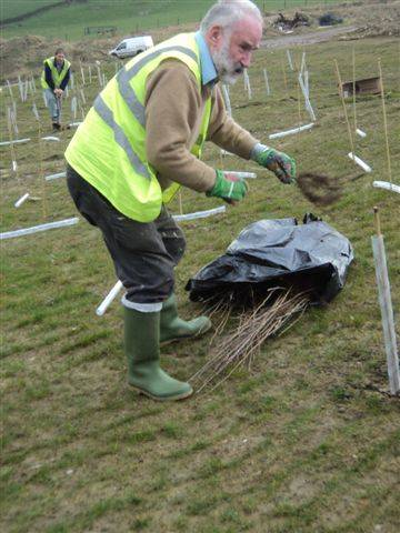 Tree Planting at Sugden End -