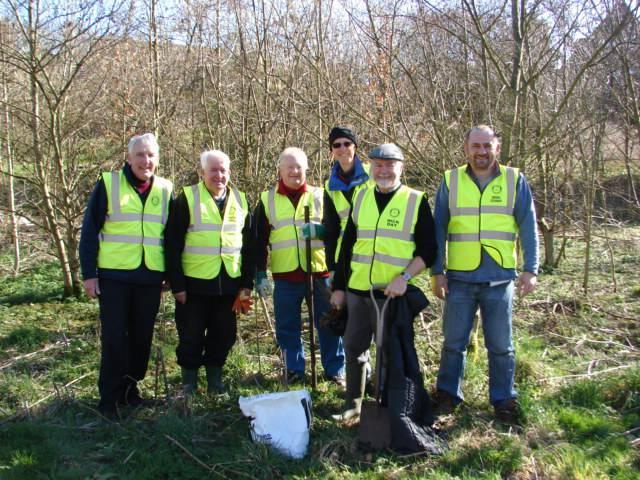Rotarians replaced trees affected by ash dieback on the Dighty.