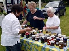 2011 Lostwithiel Carnival Charity Fayre Day Photos