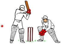 2013 Lostwithiel Carnival Cricket Competition