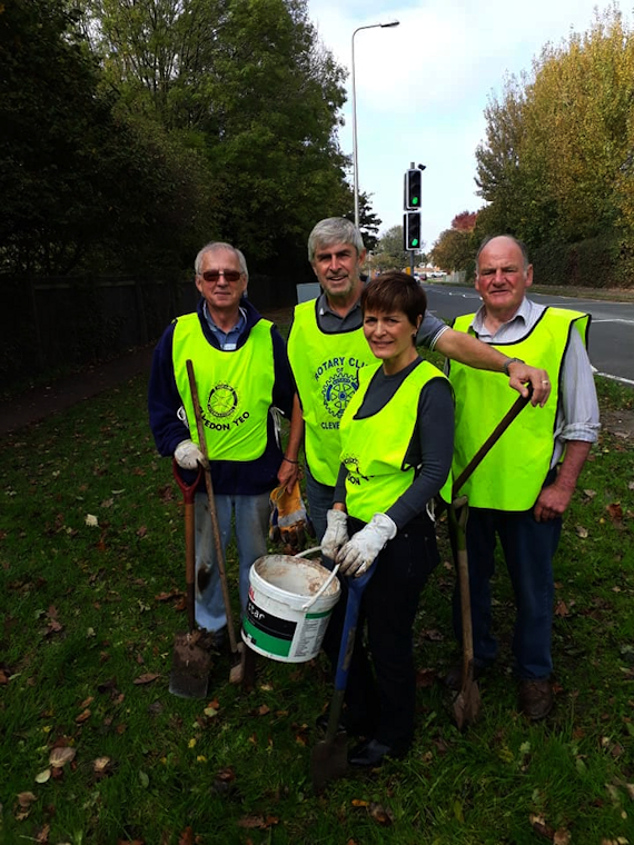 Rotary Club of Clevedon Yeo Crocus planting Southern Way Clevedon