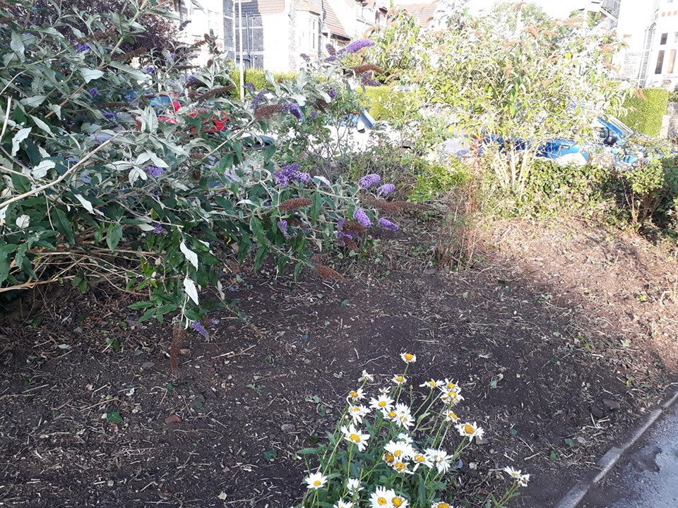 The Green Jesmond Road Clevedon Yeo Clearing Overgrown Flowerbed