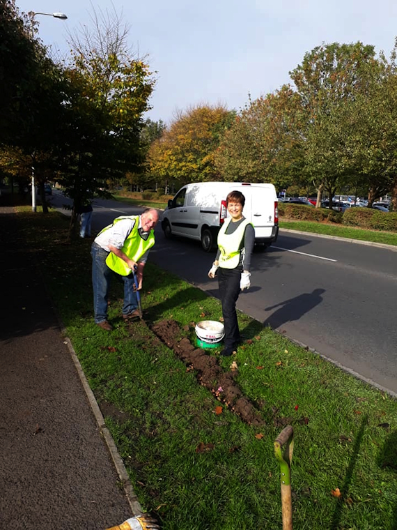Mike and Helen Crocus planting Southern Way Rotary Club of Clevedon Yeo