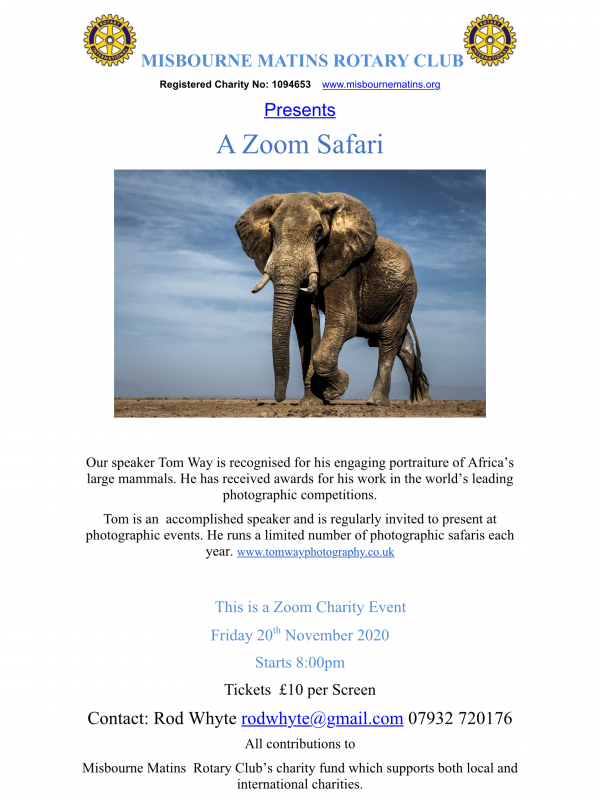 A Zoom Safari - Friday 20th November 2020 -