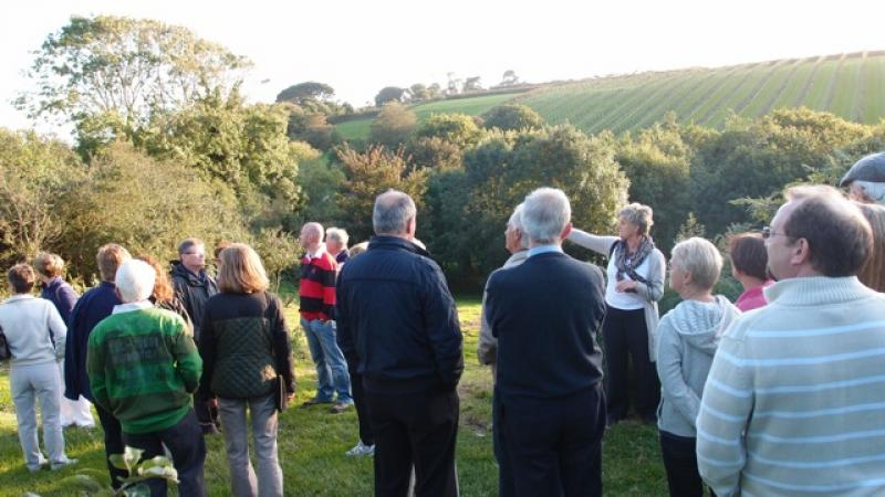 Cider Fields Tour with Gill Girard (September 2011) - The orchard and beyond
