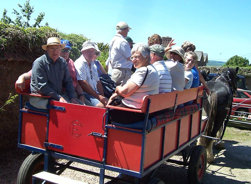 CARRIAGE RIDES & SUNDAY LUNCH ON THE FARM -