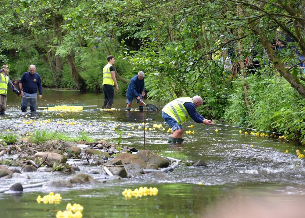 Turton's famous Duck Race - Fishing for ducks. Turton members keep the ducks on the move