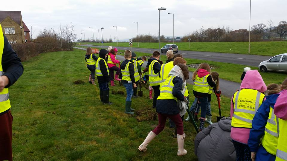 Planting Crocus Corms 2016 - Teams working together