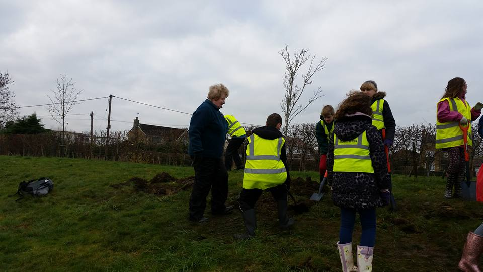 Crocus planting with Forest and Sandridge school - 15109508 1701009256851616 4749199406760901166 n