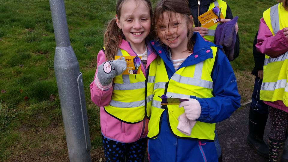Planting Crocus Corms 2016 - With the crocus badge