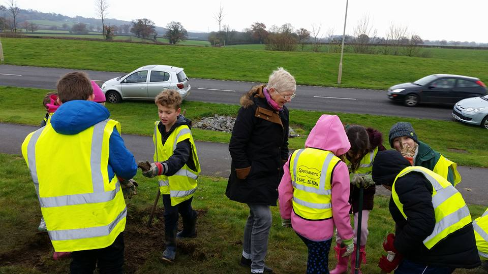 Crocus planting with Forest and Sandridge school - Preparing the soil