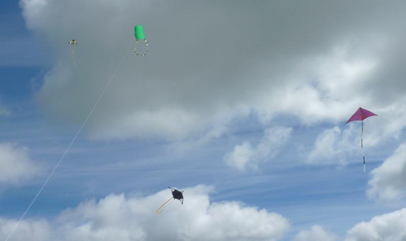 Jun 2013 Kids Out Day at Wimpole Hall and Farm - 13 Kites up high