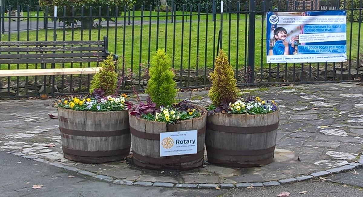 Ross-on-Wye Rotary Club Town Flower Display - Autumn/Winter planting for 2020 display