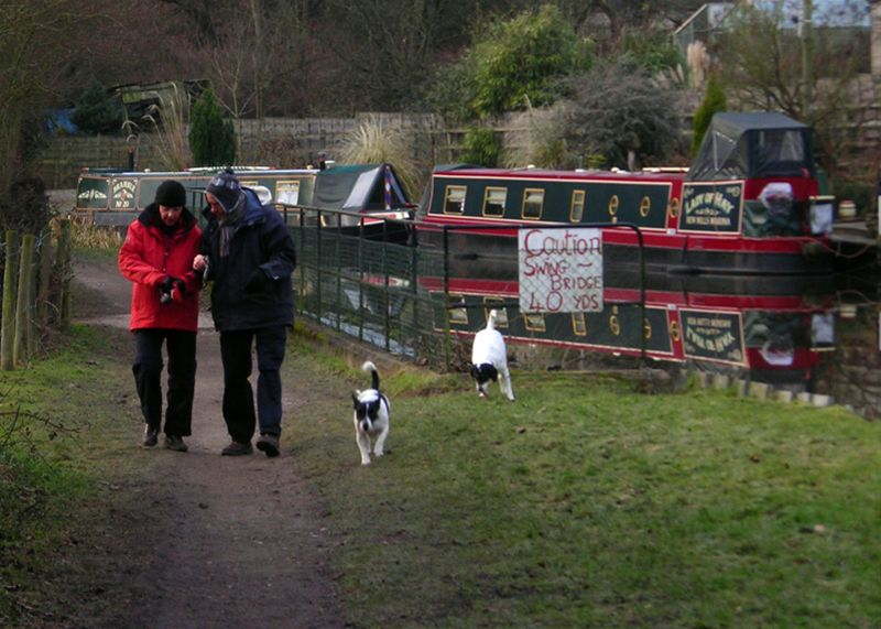New Year Walk - Steve and Carole keep the dogs under control.