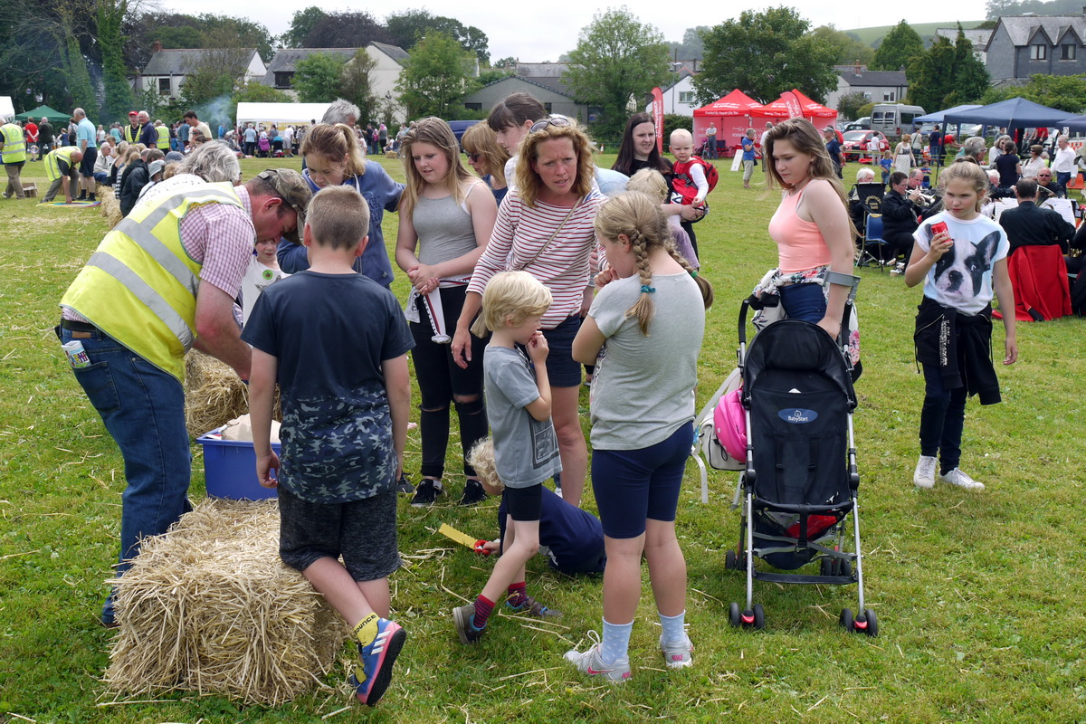 2017 Carnival Photographs - 2017-07-16 - Charity Fayre Day (13)(2)