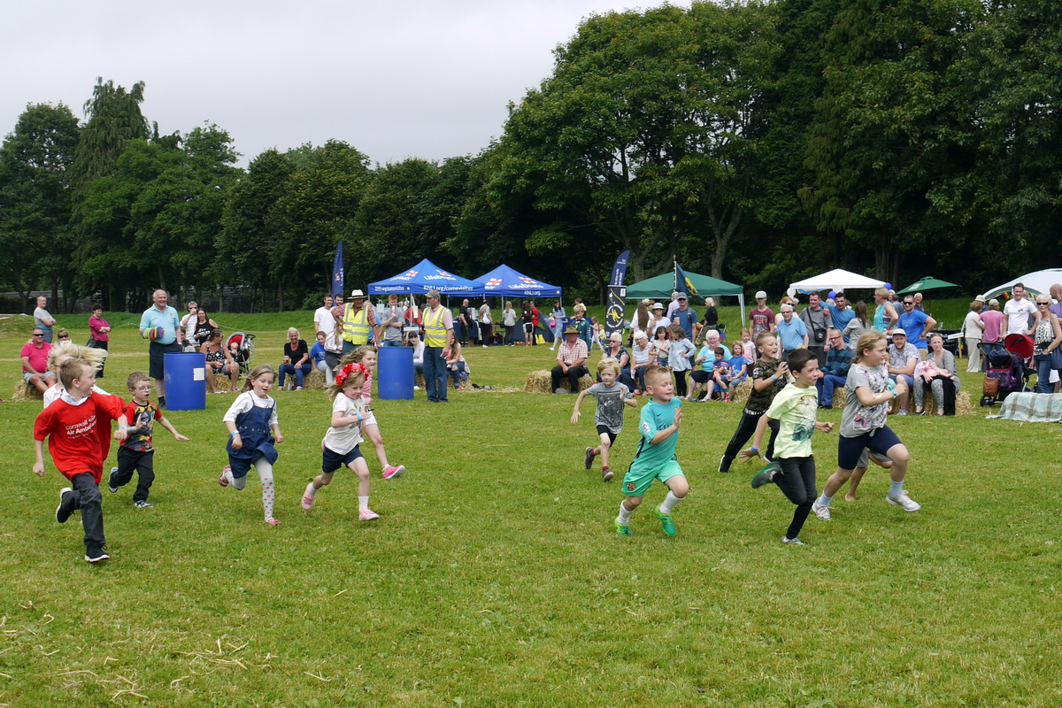 2017 Carnival Photographs - 2017-07-16 - Charity Fayre Day (14)
