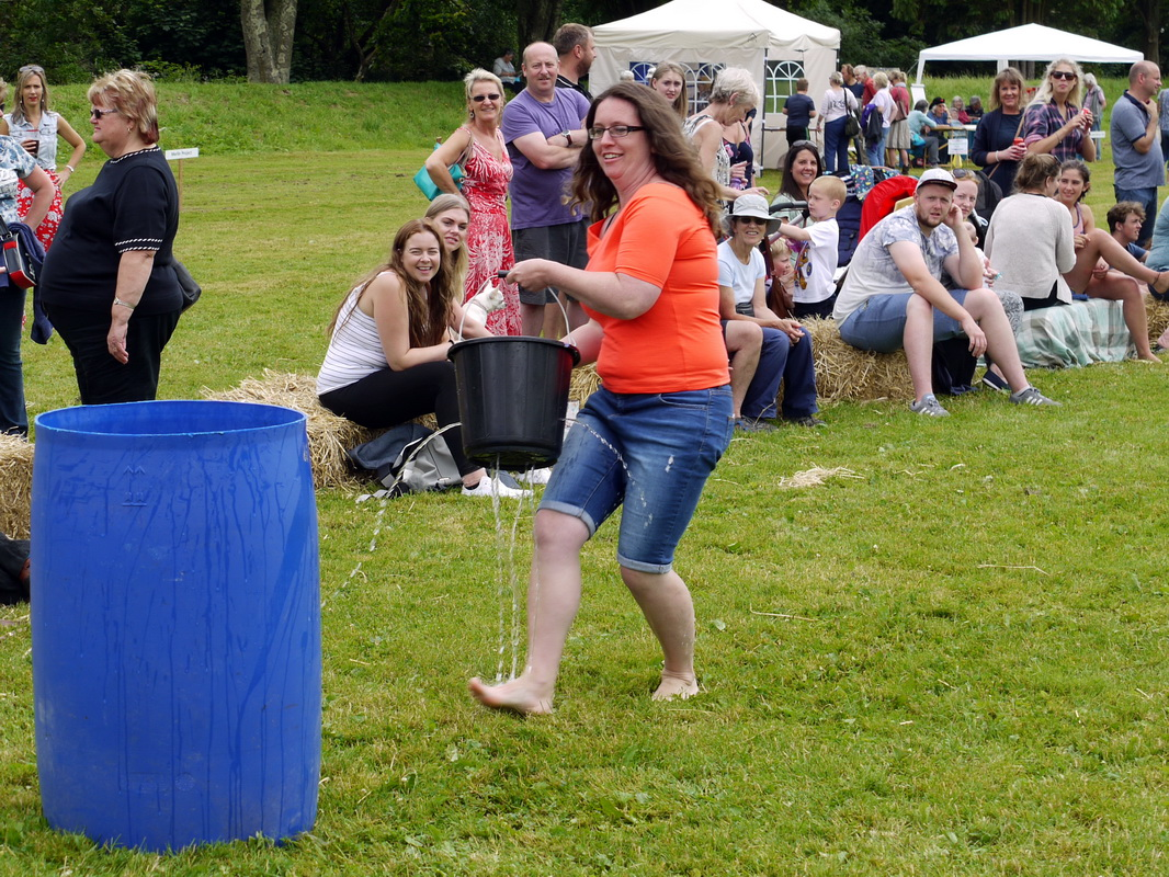 2017 Carnival Photographs - 2017-07-16 - Charity Fayre Day (18)