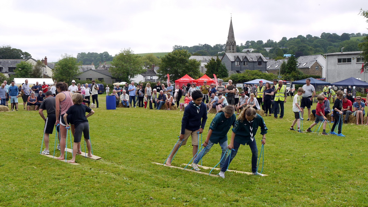 2017 Carnival Photographs - 2017-07-16 - Charity Fayre Day (19)