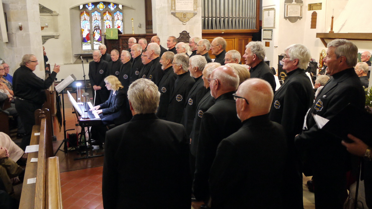 2017 Carnival Photographs - 2017-07-19b - Band and Choir Concert (02)