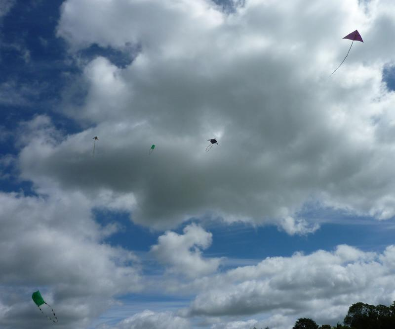 Jun 2013 Kids Out Day at Wimpole Hall and Farm - 14 Lots of kites!