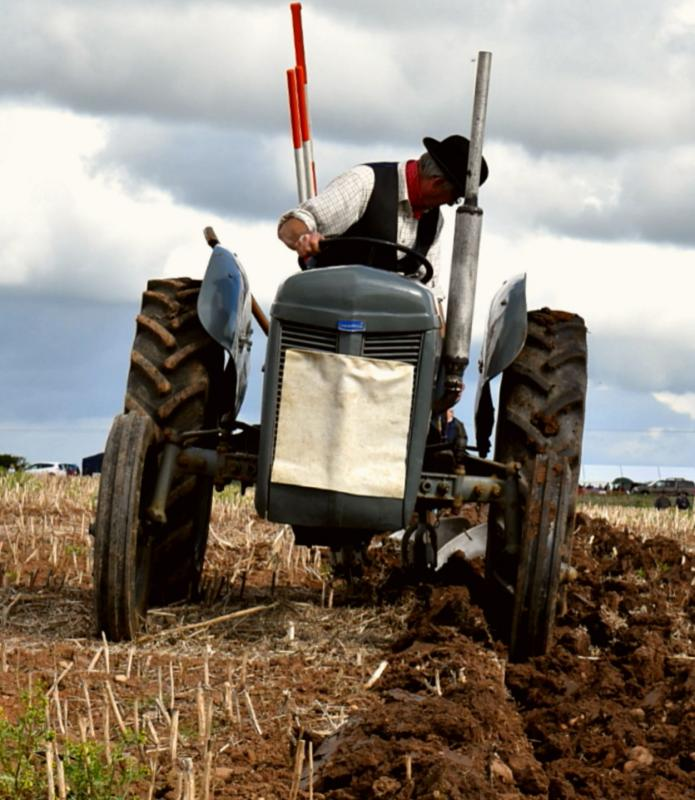 FESTIVAL OF THE PLOUGH -