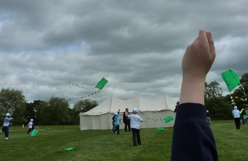 Jun 2013 Kids Out Day at Wimpole Hall and Farm - 15 More Kites