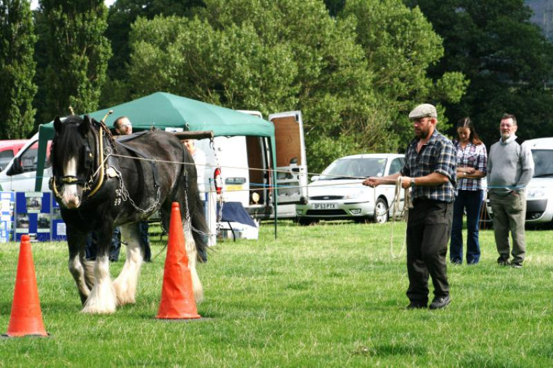 St Asaph country Fayre 2013 - 2workhorse