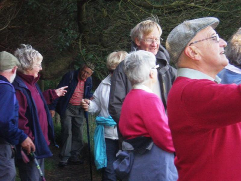 2012 Walking Weekend -